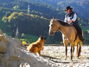 csm_post-dalaas-klostertal-reiten-pferde-horsetime_85e0a8bebe